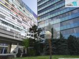 Pronájem komerčního objektu, Praha - Vršovice, Kanceláře, 50 m2