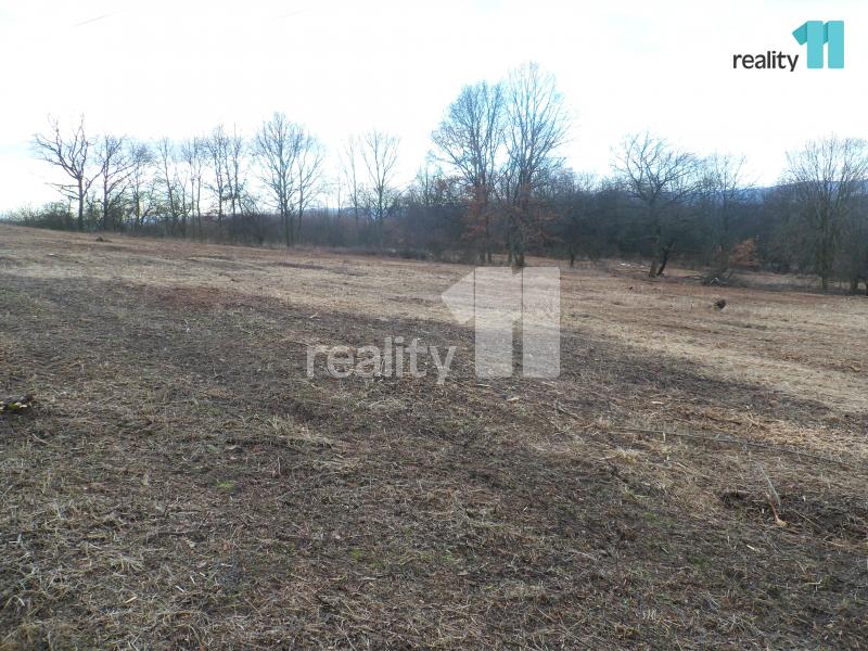 Prodej pozemku, Zemědělská půda, 7958 m2