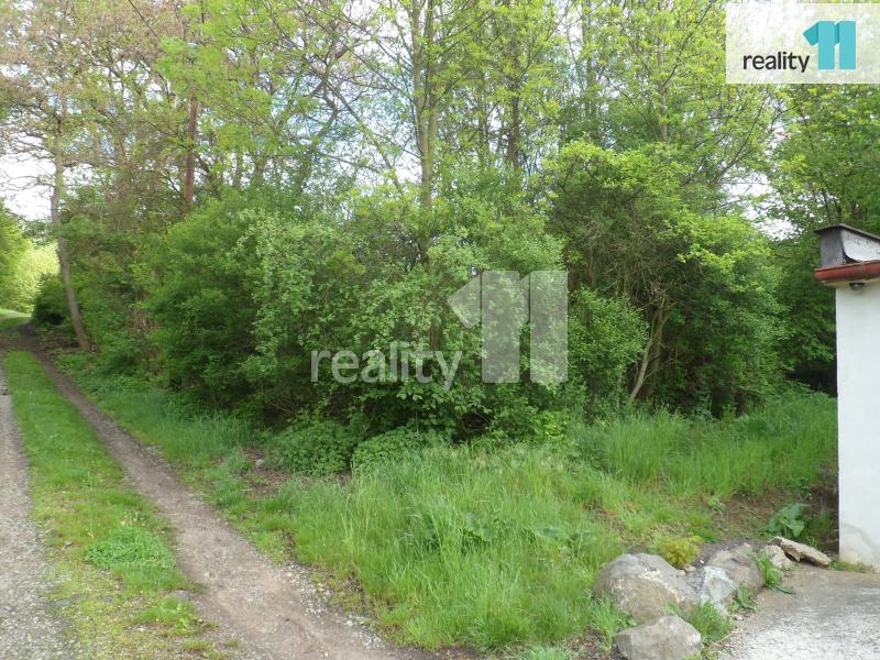 Prodej pozemku, Pro bydlení, 2915 m2